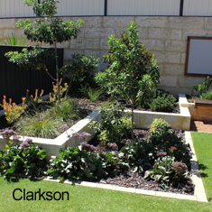Garden Ideas Perth Landscape Pictures In