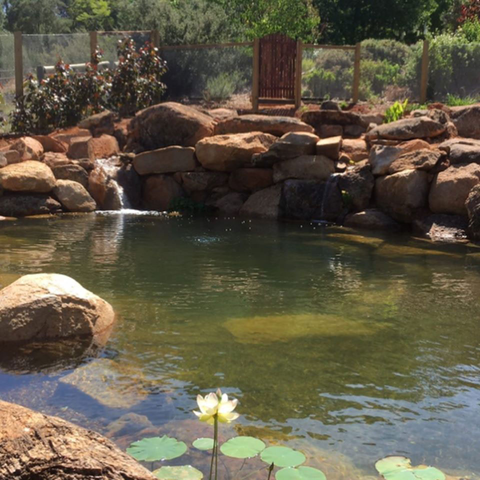 Pond And Natural Pool Construction Contractor In Perth WA