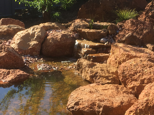 Lesmurdie Aquascape Ecosystem Pond Constructed By Think Green Landscapes In Perth Western Australia