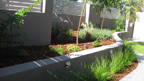 Mount pleasant landscaping project constructed by think for Courtyard garden designs australia